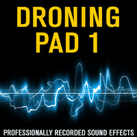 DronePAD 1