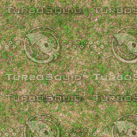 Very High resolution Grass ground 03