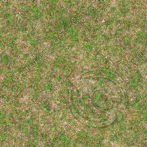 Very High resolution Grass ground 03