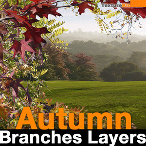 Autumn Branches Layers