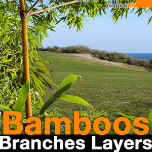 Bamboos Branch Layers