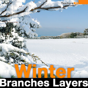 Winter Branches Layers