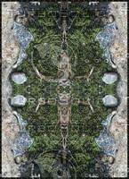 Moss Quad Print 01.jpg