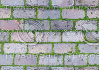 Mossy Bricks texture