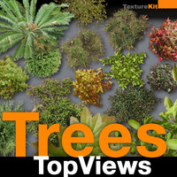 Trees TopViews Collection