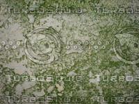 Texture_MoldyStucco_001.JPG