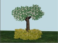 Modeling Low Cost Tree with Particle System in Max