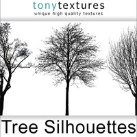 55 Tree Silhouettes (Collection)