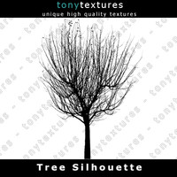 Tree Silhouette 001 - High Res