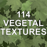 114 VEGETAL, TREE AND PLANT TEXTURES