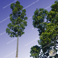 c3d_outback_tree_003.png