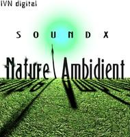 SoundX Nature