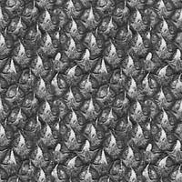 pineapple_bump.jpg