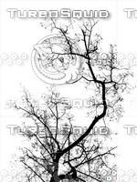 tree_lightmap5.jpg