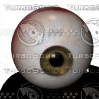 The Eyes Mega Pack (Poser Edition)