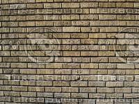 Brick Wall_11.JPG