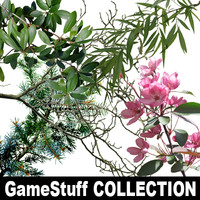 BRANCHES_Collection_01_part01.zip