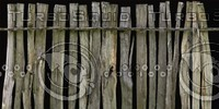 DLRUS_Fence_06_G_TH