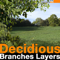Decidious Branches Layers