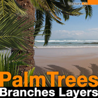 Palm Trees Branch Layers