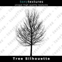 Tree Silhouette 011 - High Res