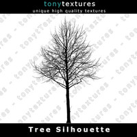 Tree Silhouette 021 - High Res