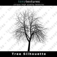 Tree Silhouette 029 - FREE