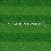 Grass Texture #12