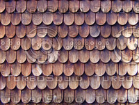 Wood_Roof_Shingles.jpg