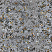 lichen wall 4a.jpg