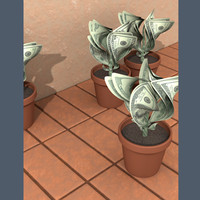 money-plants-tsmed.tif
