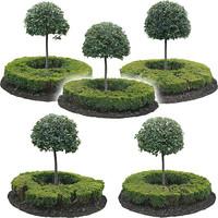 little trees 1