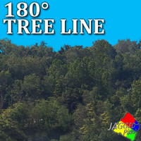 180 degree tree line