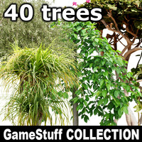 Collection_trees_Full_P_01.zip