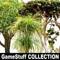 Collection_tree_tropic_01.zip