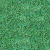 Grass059