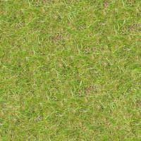 Grass060
