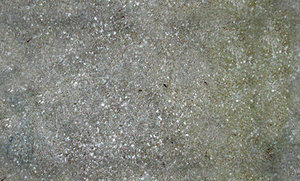 Concrete Speckles