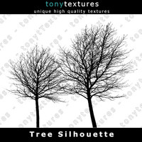 Tree Silhouette 014 - High Res