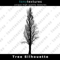 Tree Silhouette 020 - High Res