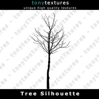 Tree Silhouette 023 - High Res