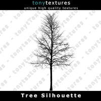 Tree Silhouette 035 - High Res