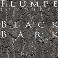 Bark - Black