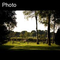 Dutch landscape 4