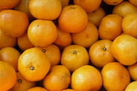 oranges 04.jpg