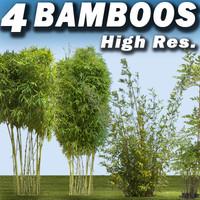 4 Bamboos Collection - High Resolution