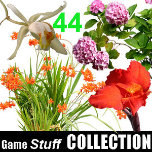 Collection_Flower_2