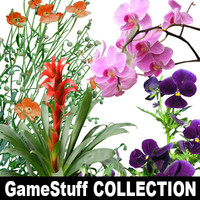 FLOWERS_COLLECTION_01_01.zip