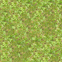 Grass056