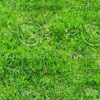 Ground_grass_04.zip
